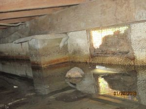 Standing water under pier and beam house